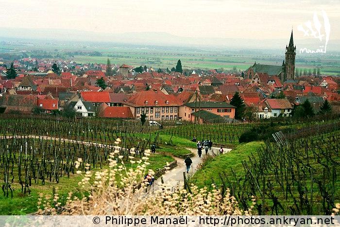 Alsace : Dambach-la-Ville