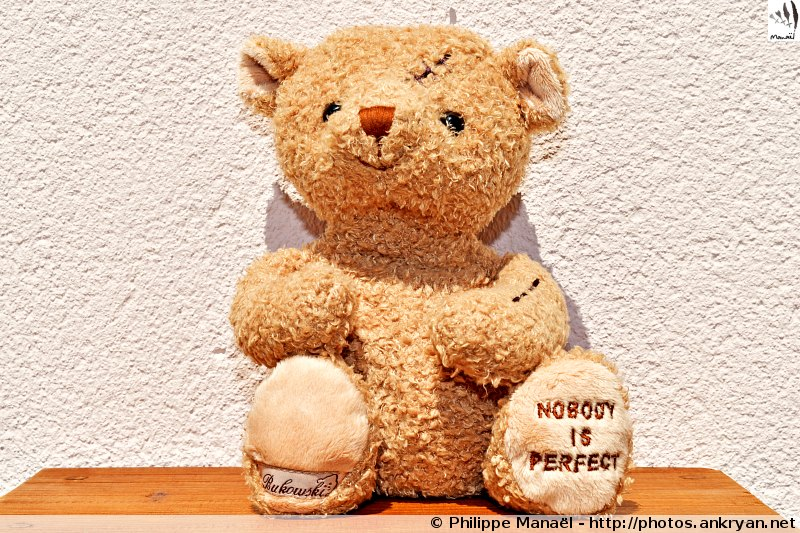 "Peluche ours Bukowski, Nobody is perfect / Mascotte ""Boute-en-train"""