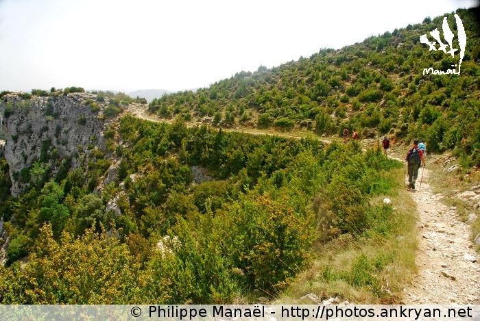Chemin de La Costera, canyon du Mascun (Sierra de Guara, Espagne)