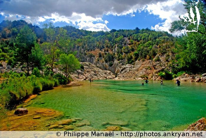 Fuente de La Tamara, Canyon de la Peonera (Sierra de Guara, Espagne)