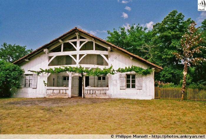 Sabres : Ecomusée de Marquèze (trekking Traversée des Landes). France, Aquitaine, Landes