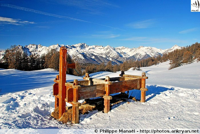 Fontaine, col des Prés de Fromage - Queyras (Hautes-Alpes, France)