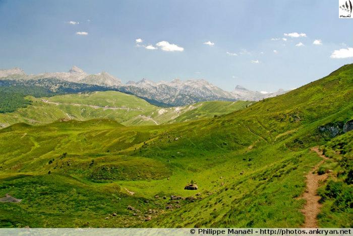 Plateau d'Errayze (Pyrénées, France)