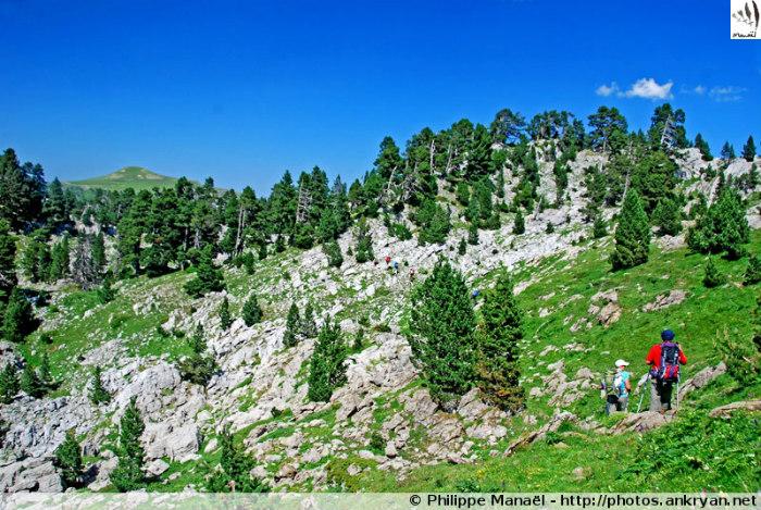 Crêtes de Sierra Longa (Pyrénées, Espagne)