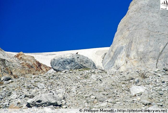 Moraines, glacier d'Ossoue (Massif du Vignemale, Pyrénées, France)