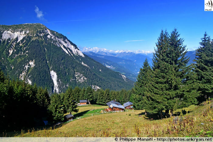 La Dent du Villard depuis le Plan Fournier, Le Planay (Savoie, France)