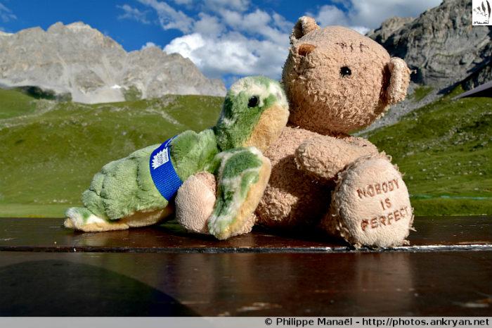 Duo solidaire au refuge d'Entre le Lac, Peisey-Nancroix (Vanoise, Savoie, France)