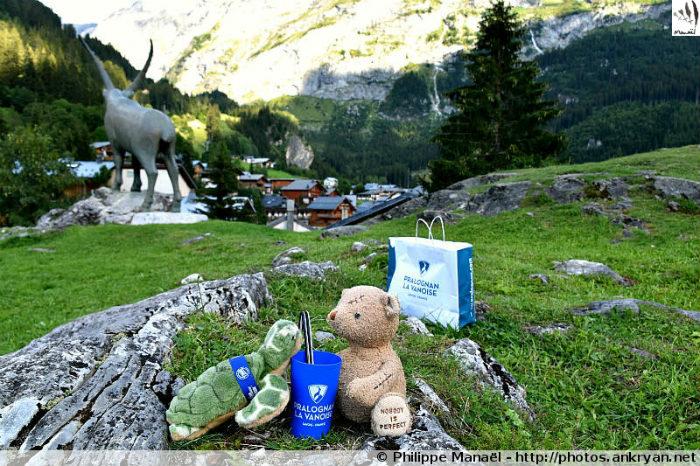 Duo solidaire et le Bouquetin de Pralognan-la-Vanoise (Savoie, France)