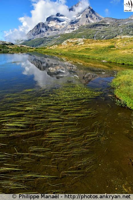 Lac Blanc de Termignon, plateau de Bellecombe (Vanoise, Savoie, France)