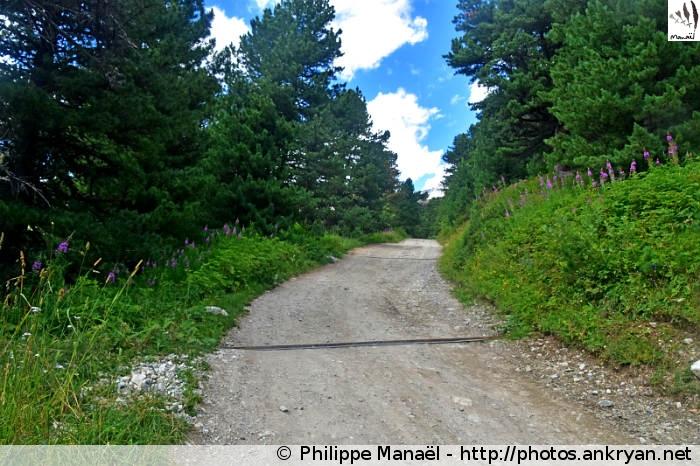 Chemin pour le Plan d'Amont (Vanoise, Savoie, France)