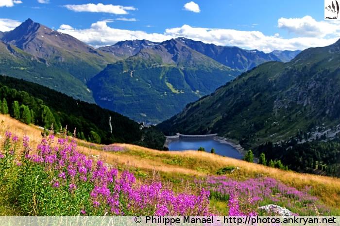 Plan d'Amont, vallon de la Fournache (Vanoise, Savoie, France)