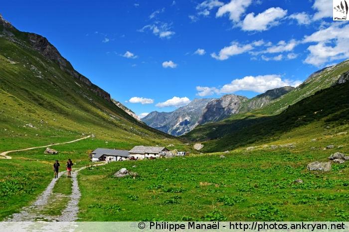 Alpage de Ritord, vallée de Chavière (Pralognan-la-Vanoise, Savoie, France)