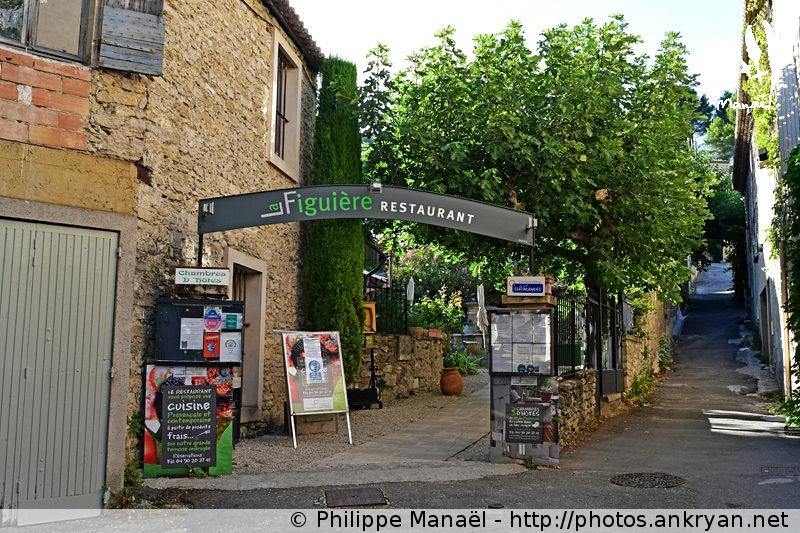 Chambre d'hôtes La Figuière, Fontaine-de-Vaucluse (Provence, Vaucluse, France)