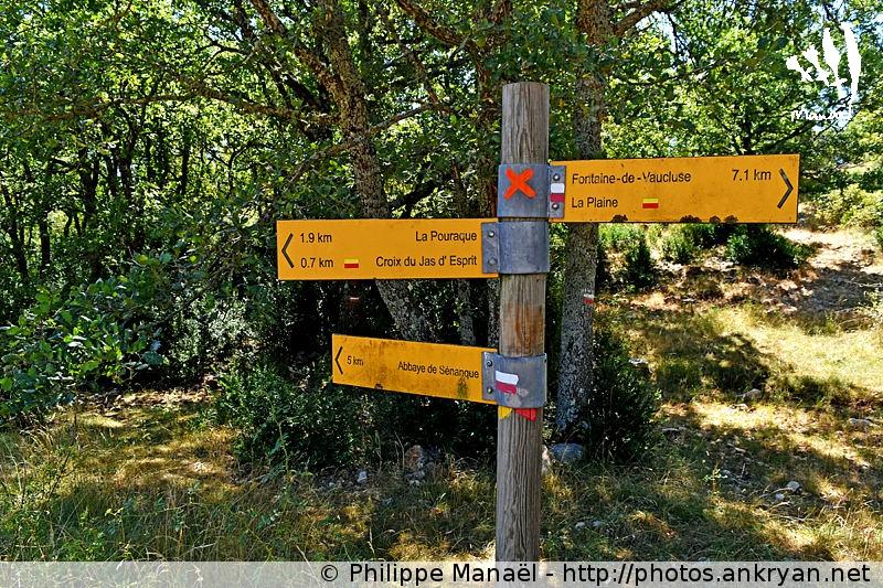 Croix de Pouracon, Plateau de Vaucluse (Provence, Luberon, France)