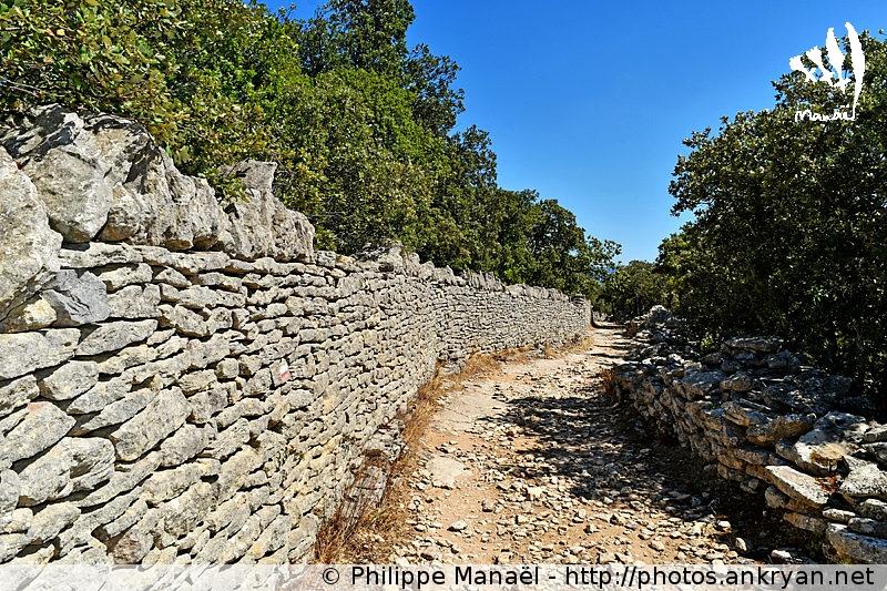 Mur de pierres sèches qui mène à Gordes (Provence, Vaucluse, France)