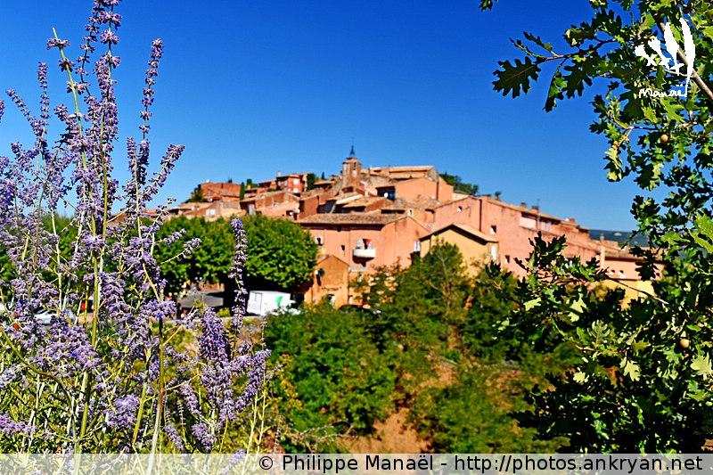 Village de Roussillon-en-Luberon avec un parfum de lavande (Provence, Vaucluse, France)