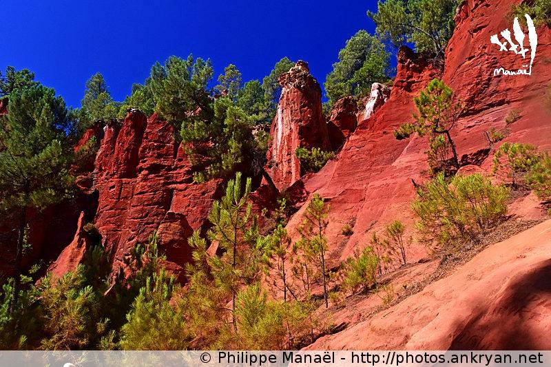 Falaises rouges du Sentier des Ocres, Roussillon-en-Luberon (Provence, Vaucluse, France)