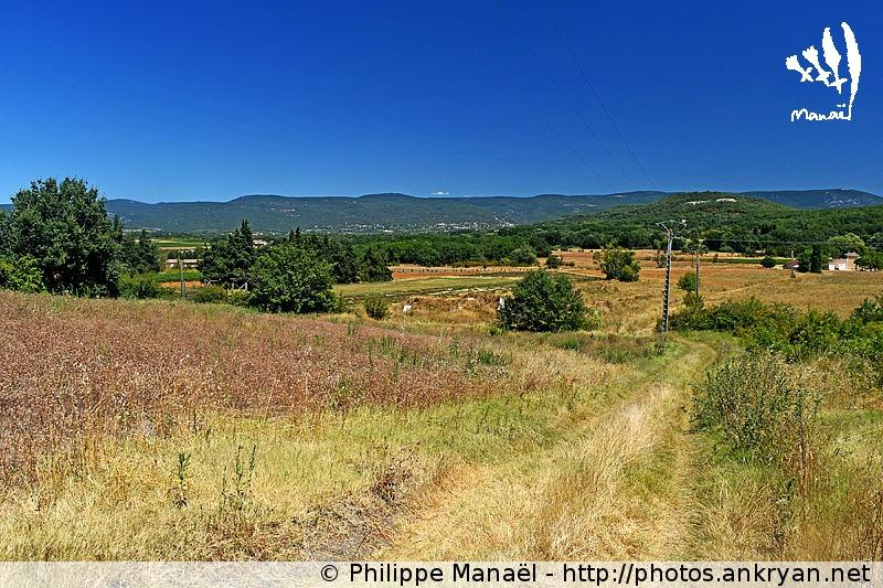 Chemin de traverse pour Gargas dans le Luberon (Provence, Vaucluse, France)