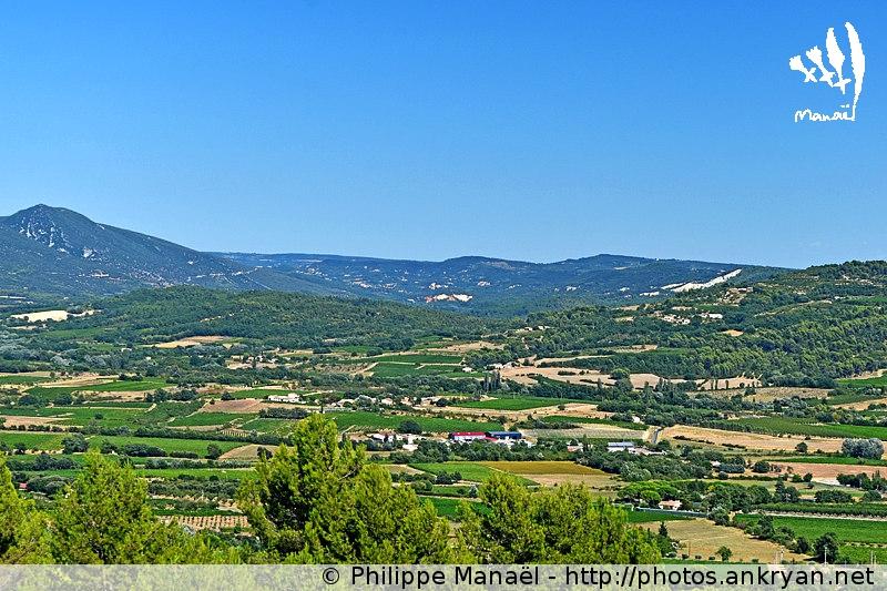Paysage du Pays d'Apt, Luberon (Provence, Vaucluse, France)