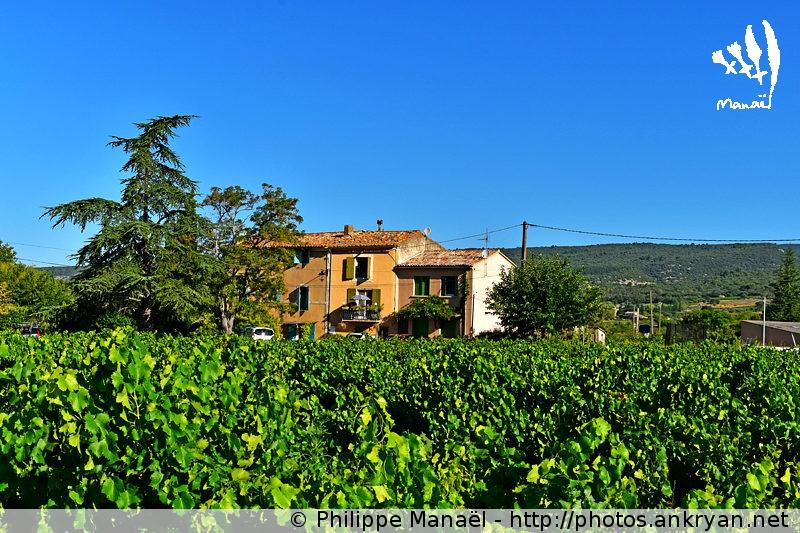 La Bastide de la Source, Saint-Saturnin-Lès-Apt. Luberon (Provence, Vaucluse, France)