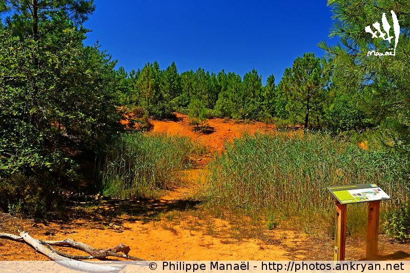 Trou des Américains, colline de Bruyère à Villars (Luberon, Provence-Vaucluse, France)