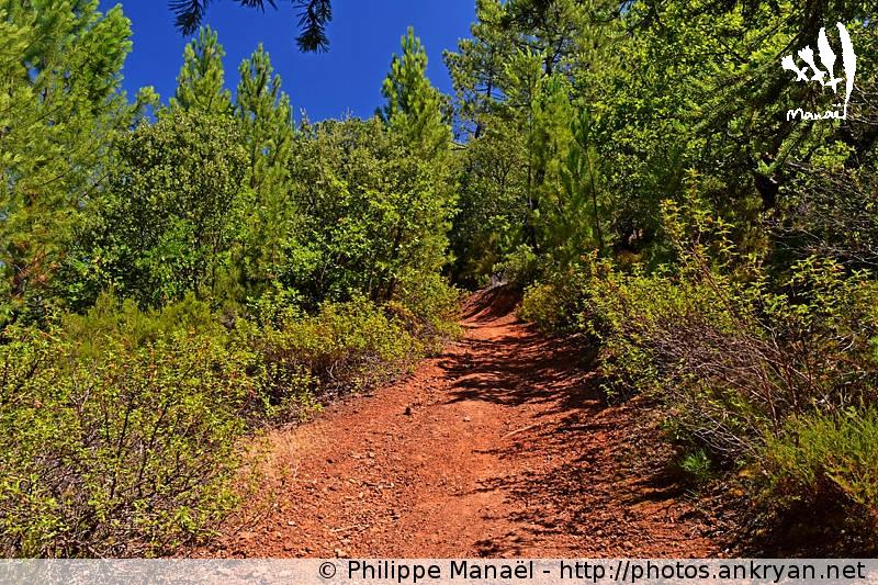 Sentier de la colline des Ocres de la Bruyère à Villars, Luberon (Provence, Vaucluse, France)